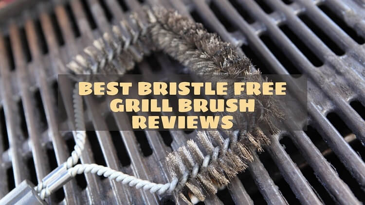 Best Bristle Free Grill Brush Reviews